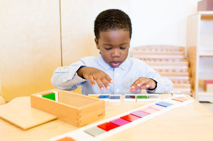 Credential Recognition for Montessori Training